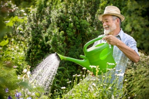 watering-can-old-man
